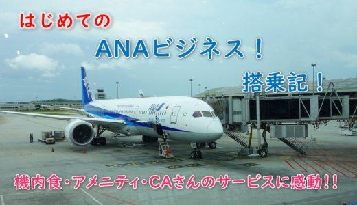 はじめてのANAビジネスクラス搭乗記!機内食、座席、アメニティと大切なポイント!CAさんのサービスに感動!